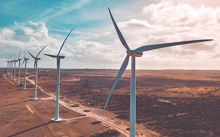 Líder na geração de energia eólica, Bahia ganhará novo parque
